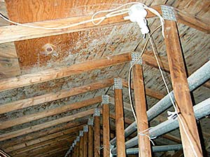 Attic Ventilation Central New Jersey Double D Construction